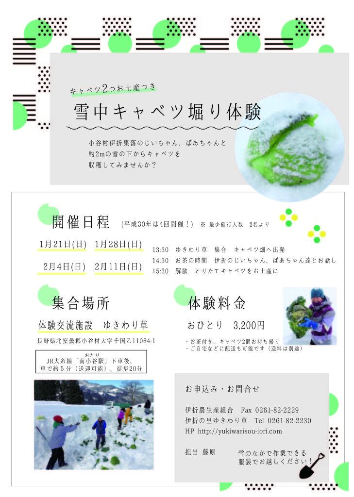 180118_日付修正_yukiwaricabage_tirashi-03