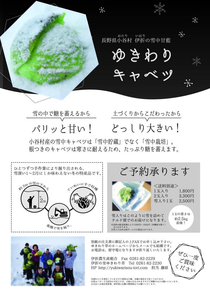 180109_yukiwaricabage_tirashi _ol-01
