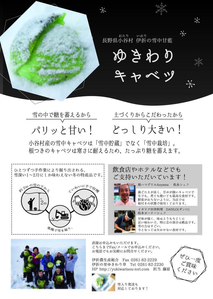 180109_yukiwaricabage_tirashi _ol-02
